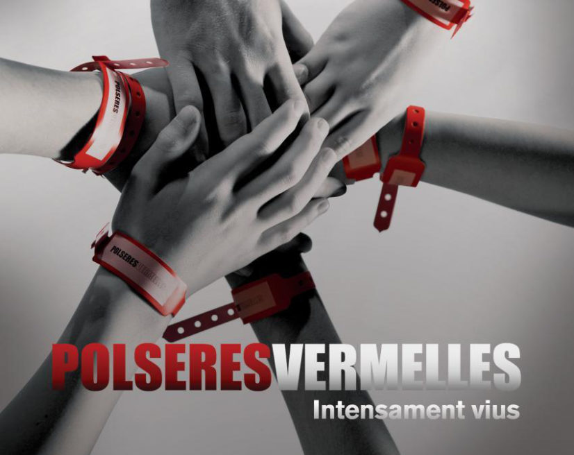 Polseres Vermelles / Red Band Society